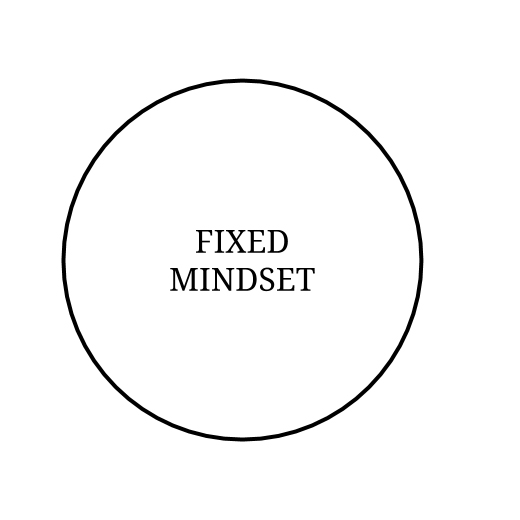 Fixed Mindset